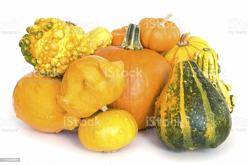 Composition of pumpkins and gourds on white stock photo