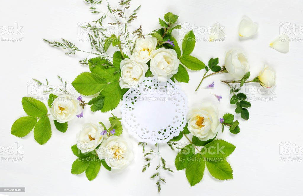 Composition with openwork doily and wild rose stock photo