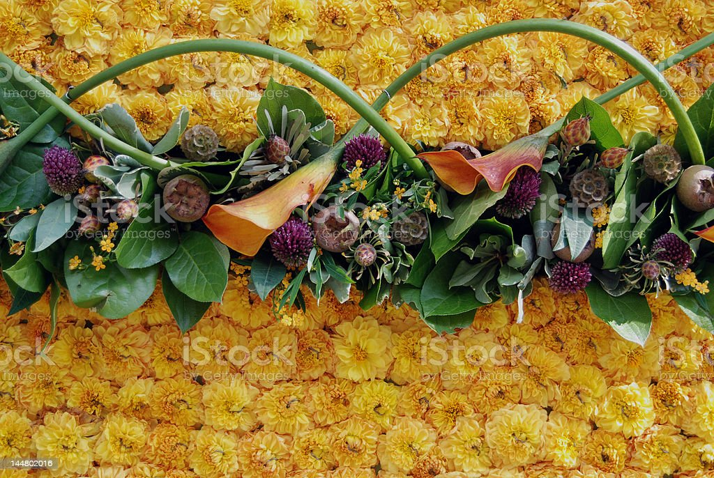 Composition with plants royalty-free stock photo