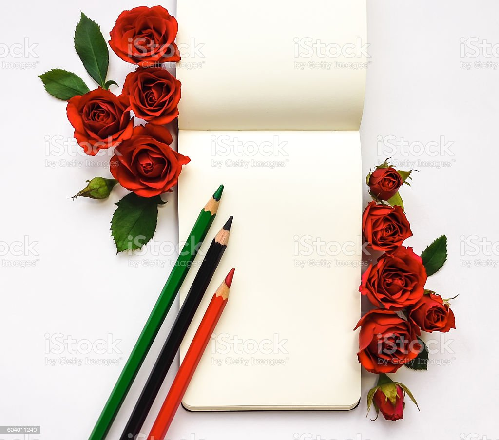 Composition with sketchbook, roses and pencils. Flat lay stock photo