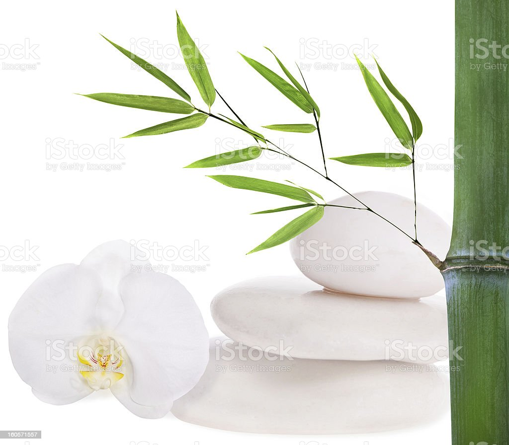 composition with white stones, bamboo and orchid royalty-free stock photo