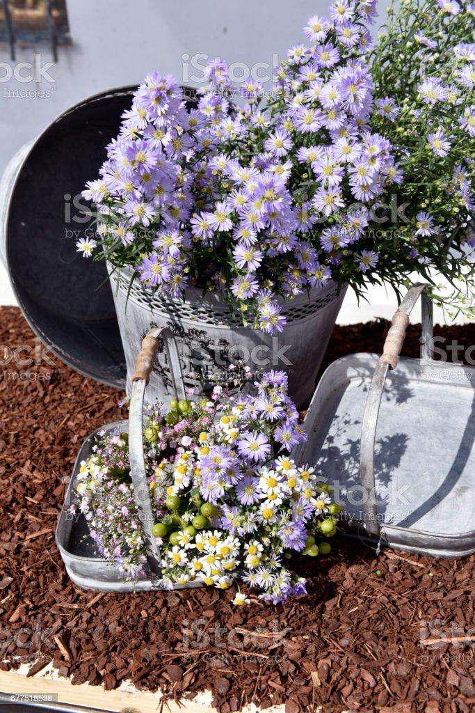 composizione floreale stock photo