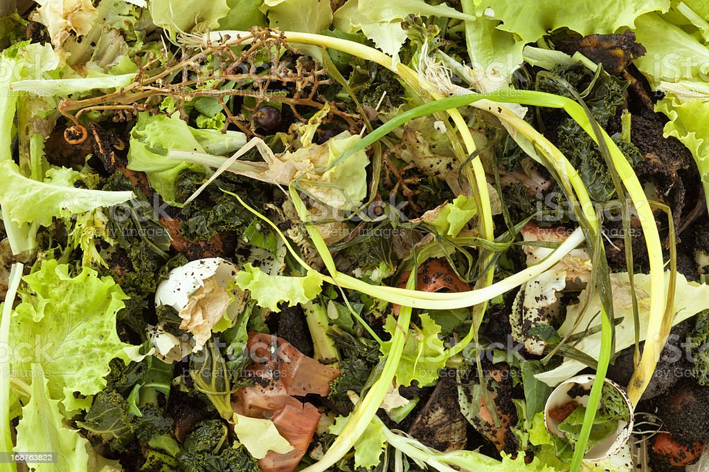 Compost Heap Showing Fruit and Vegetable Scraps royalty-free stock photo