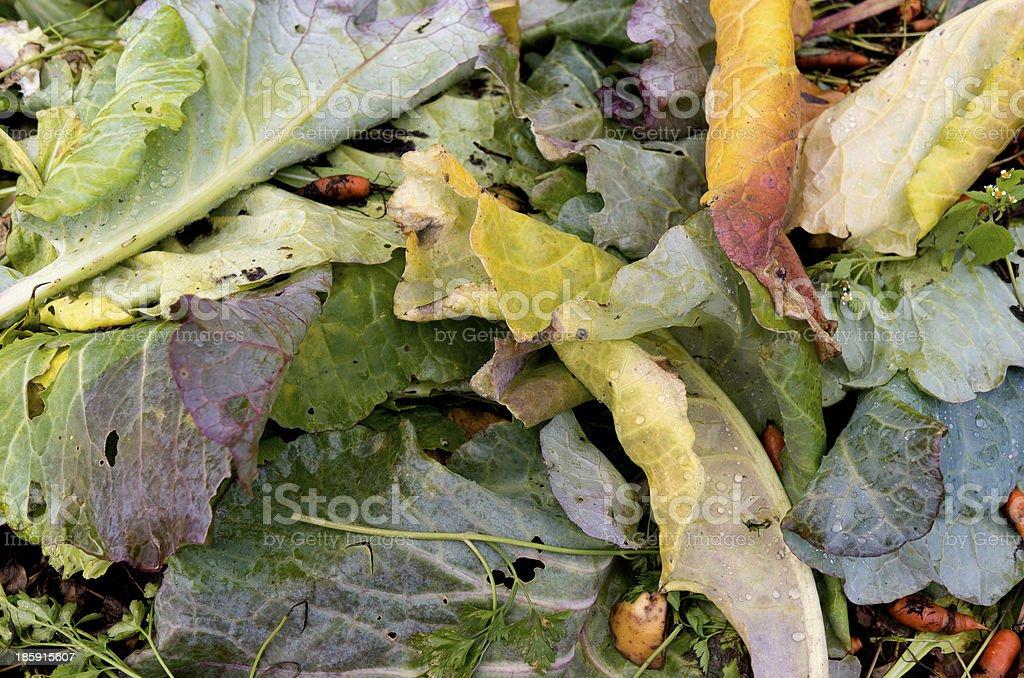 堆肥堆積、植物があります。 ロイヤリティフリーストックフォト