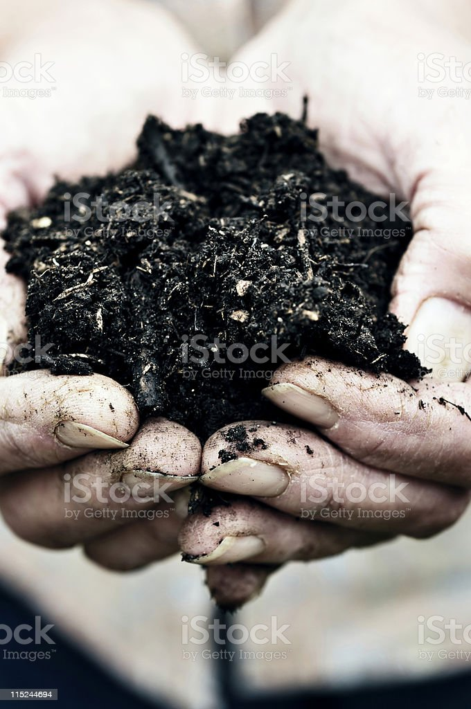 compost in cupped hands royalty-free stock photo