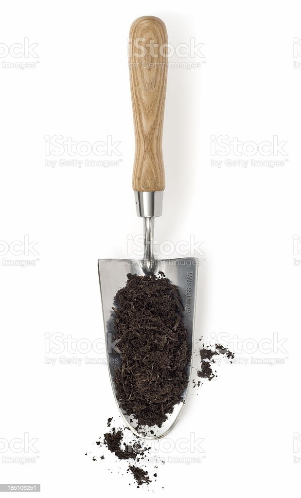 Compost on a Trowel stock photo