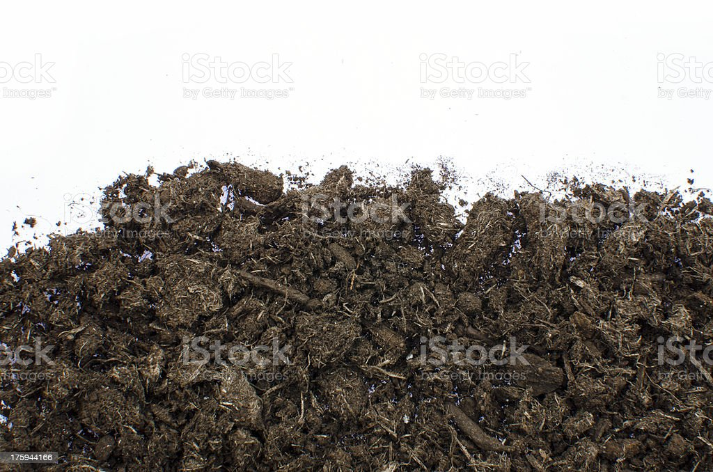 Compost on white royalty-free stock photo