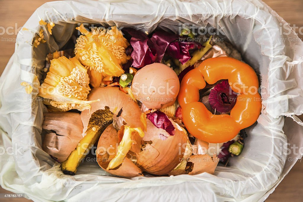 Compost stock photo