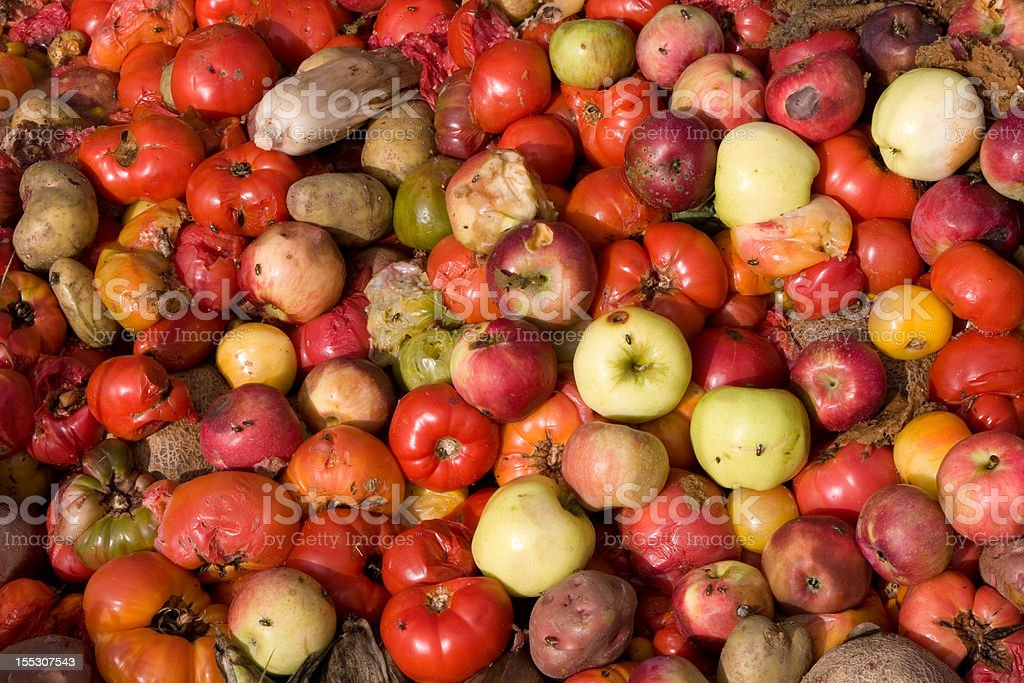 Compost Pile of Rotten Vegetables stock photo