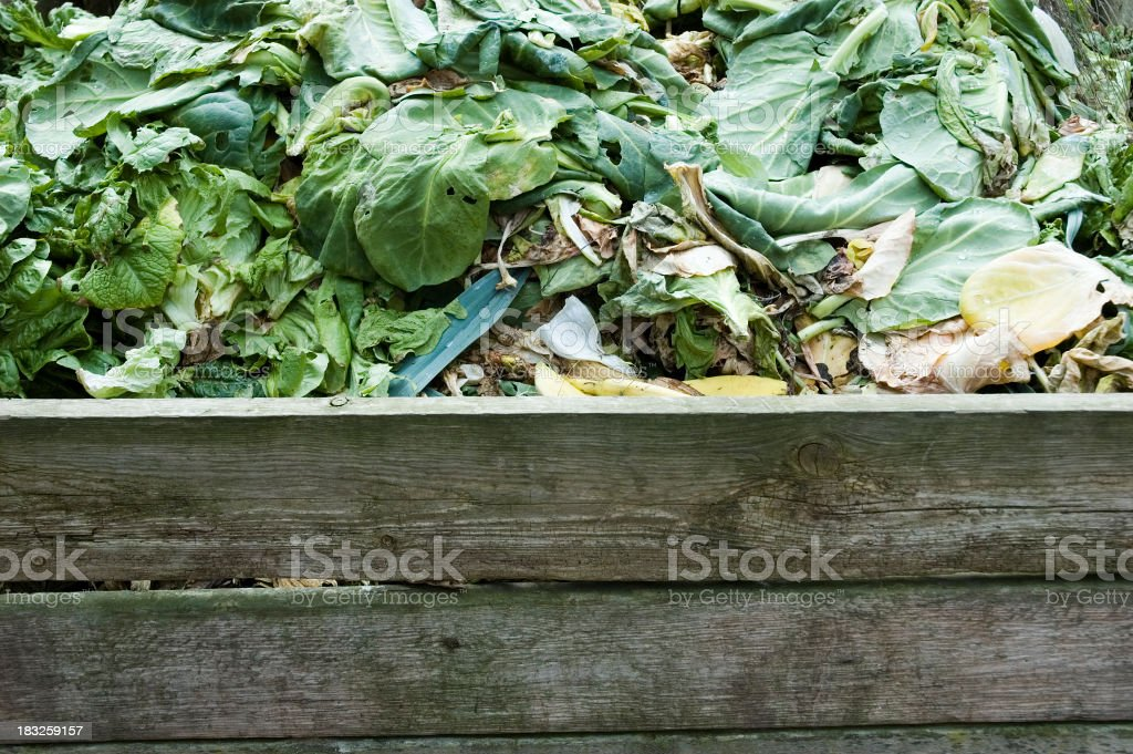 Compost stage 1 royalty-free stock photo
