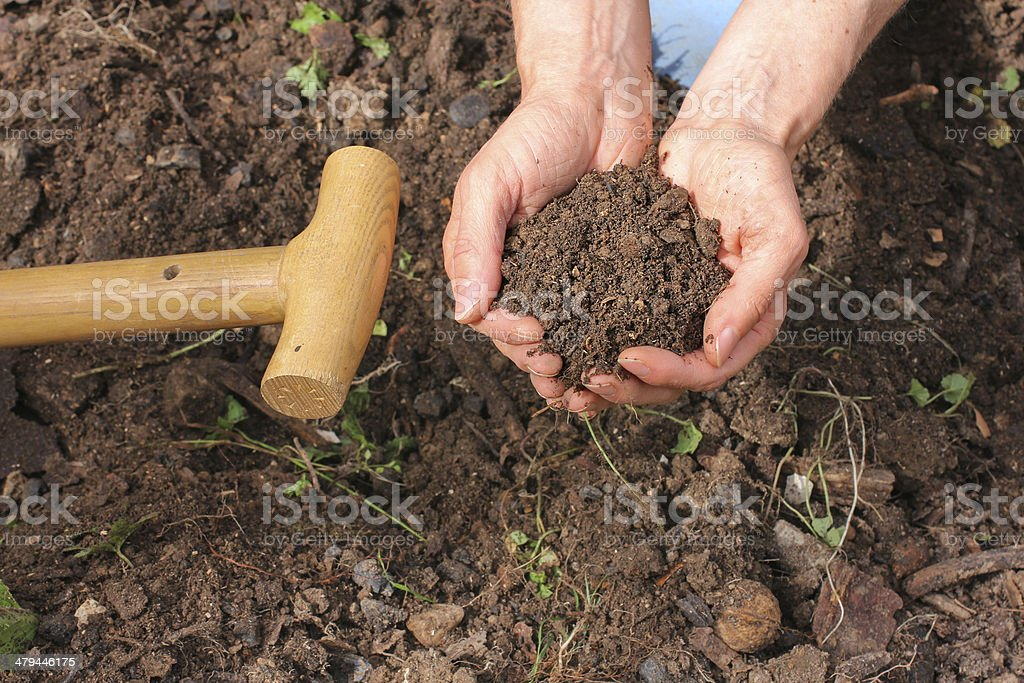 Composted earth stock photo