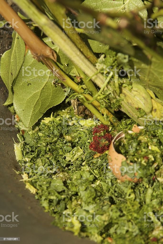 Composting or Compost stock photo