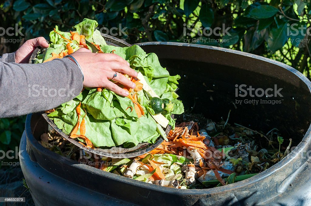 Composting stock photo