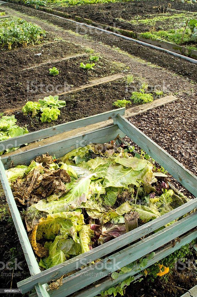 Composting stock photo