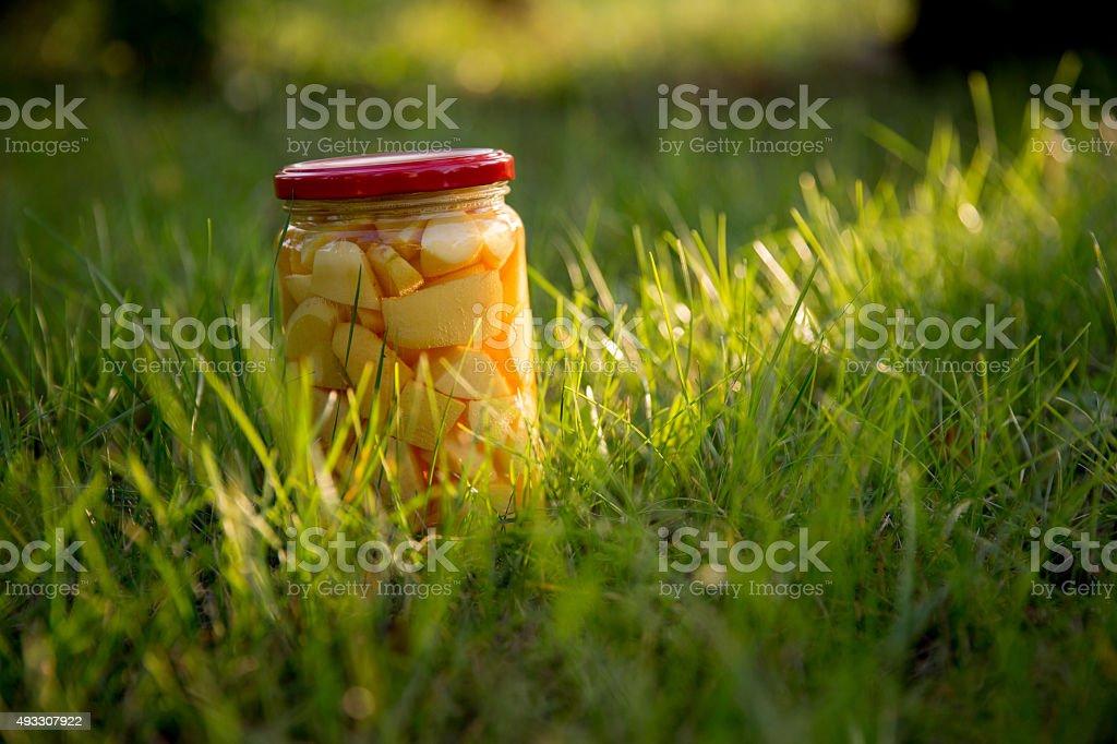 Compote jar stock photo
