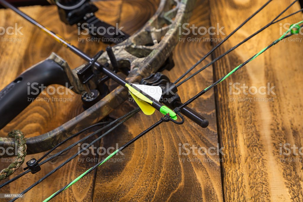 Compound hunting bow stock photo