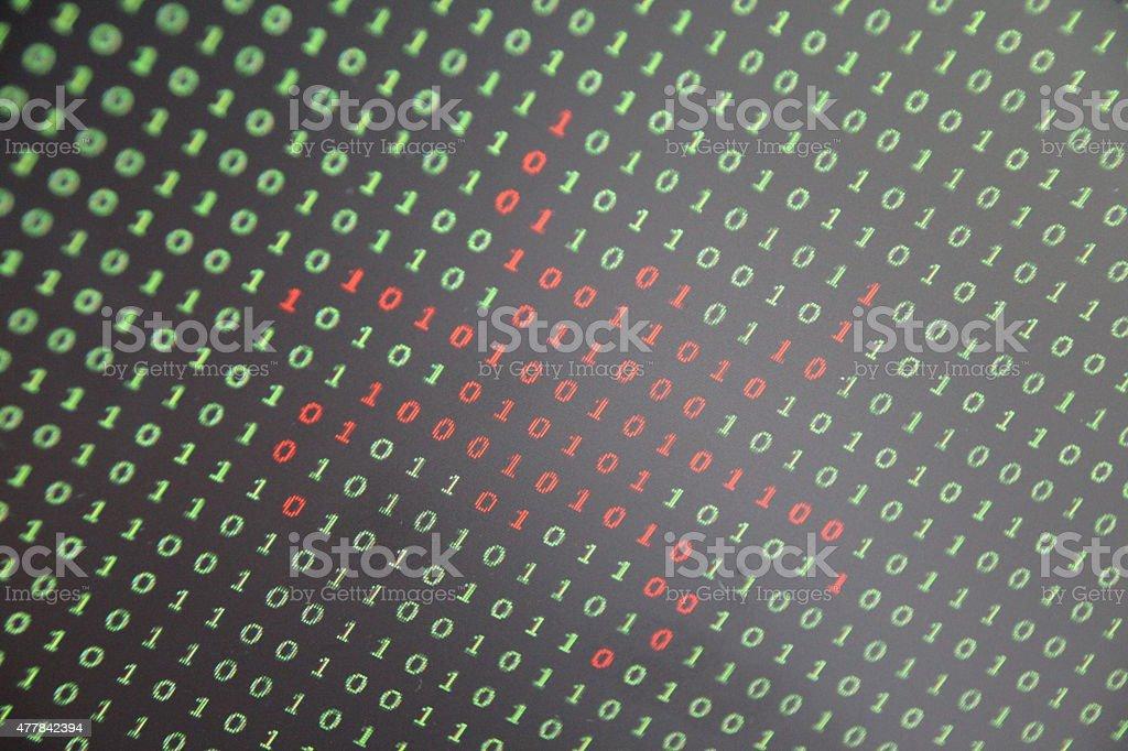 Computer Bug Closeup stock photo