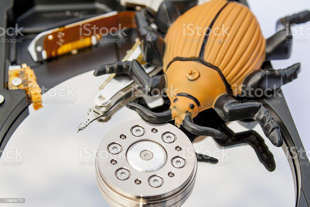 computer bug royalty-free stock photo