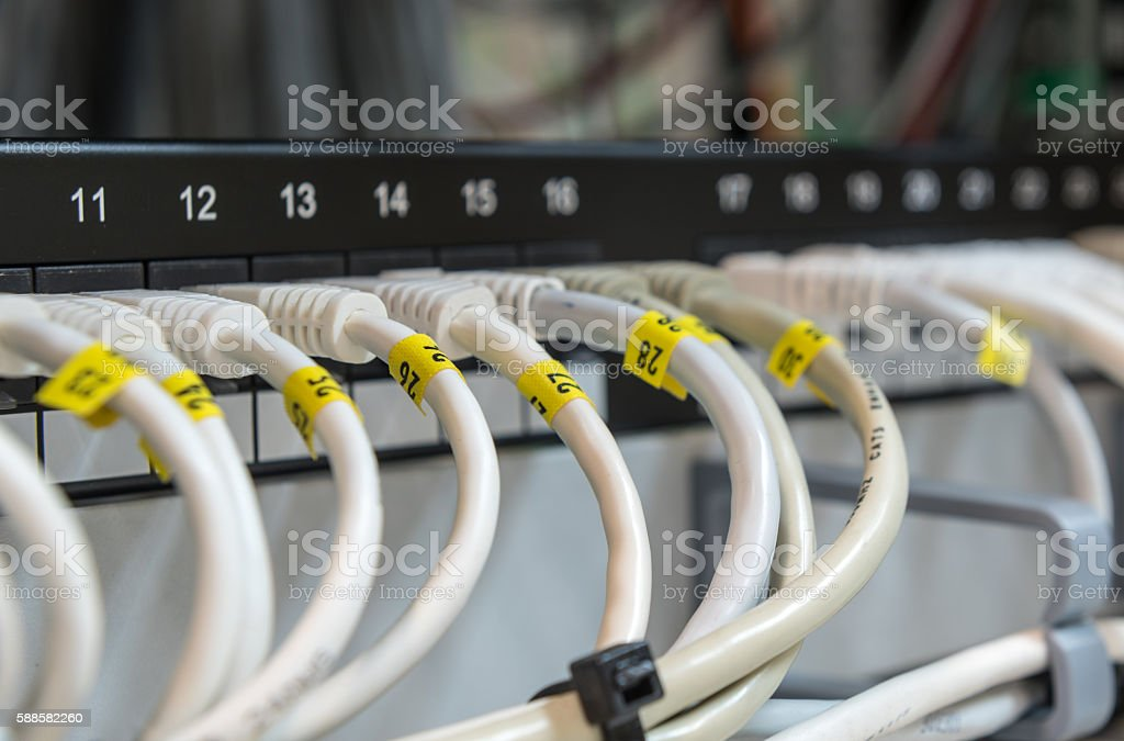Computer ethernet data lan  cables in a row. stock photo