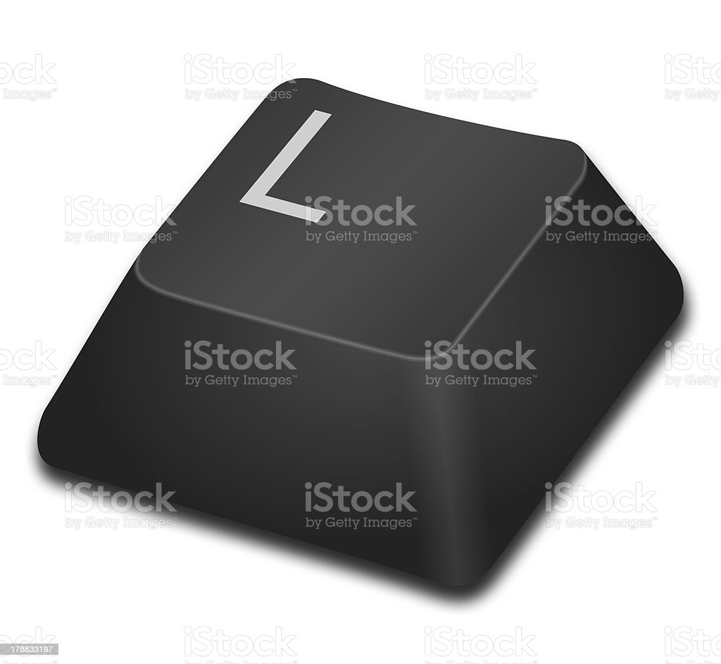 Computer Key - L stock photo