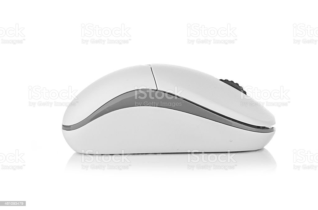 Computer mouse on a white background stock photo
