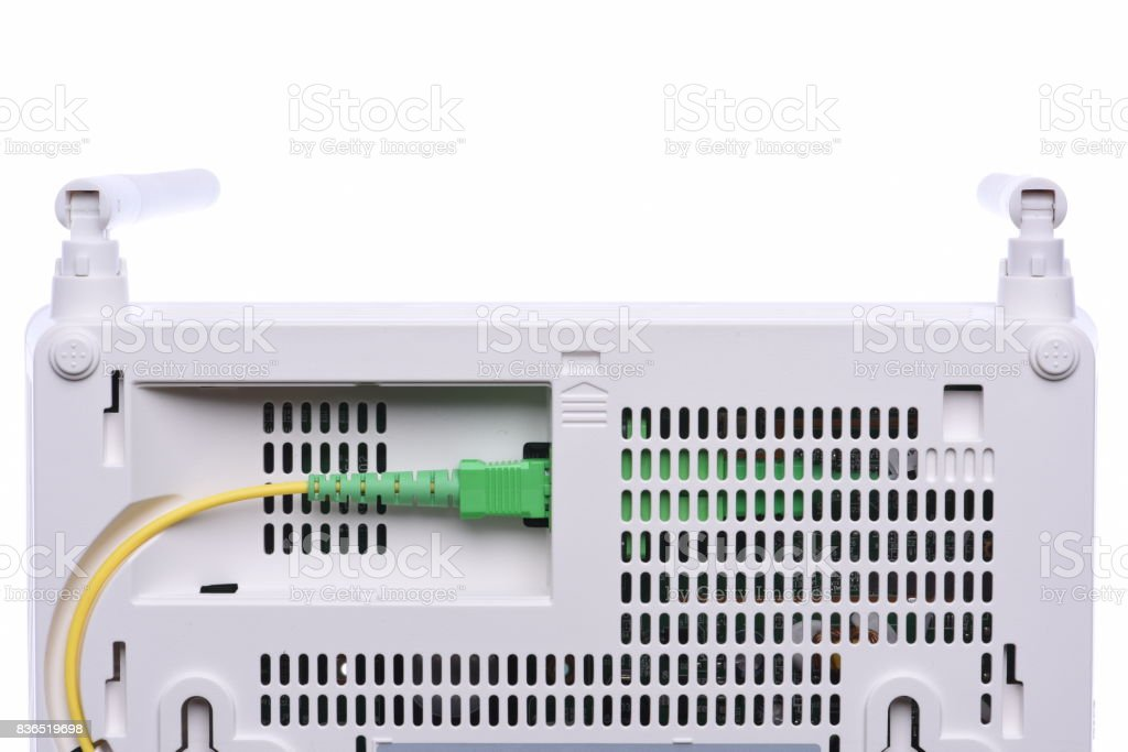 Computer network cable in router closeup stock photo