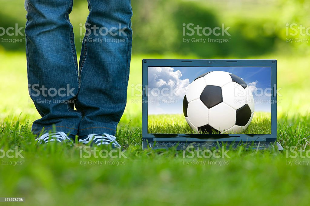 Computer on the grass royalty-free stock photo
