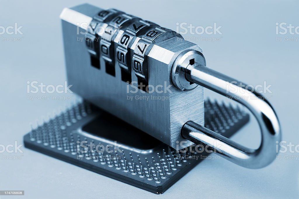 Computer security royalty-free stock photo