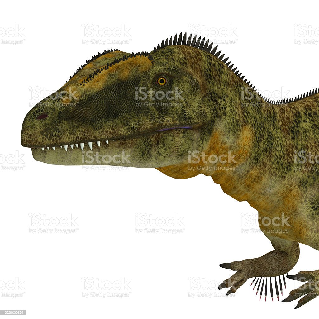 Concavenator Dinosaur Head stock photo