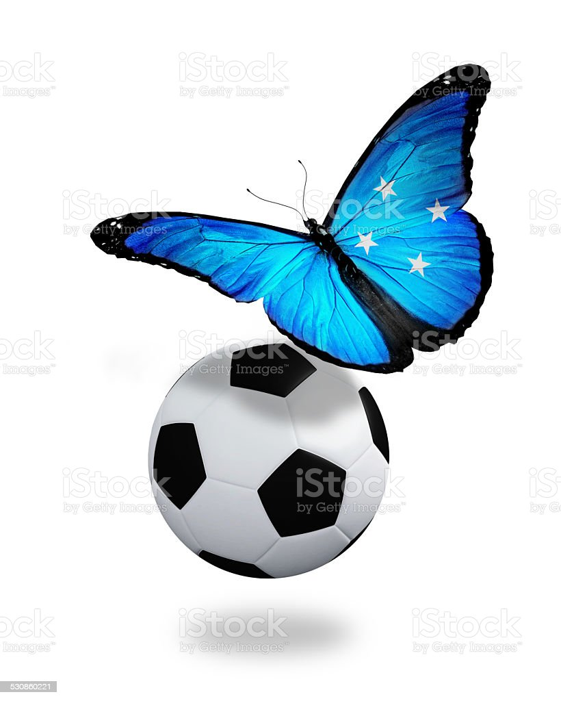 Concept - butterfly with Micronesia flag flying near the ball stock photo