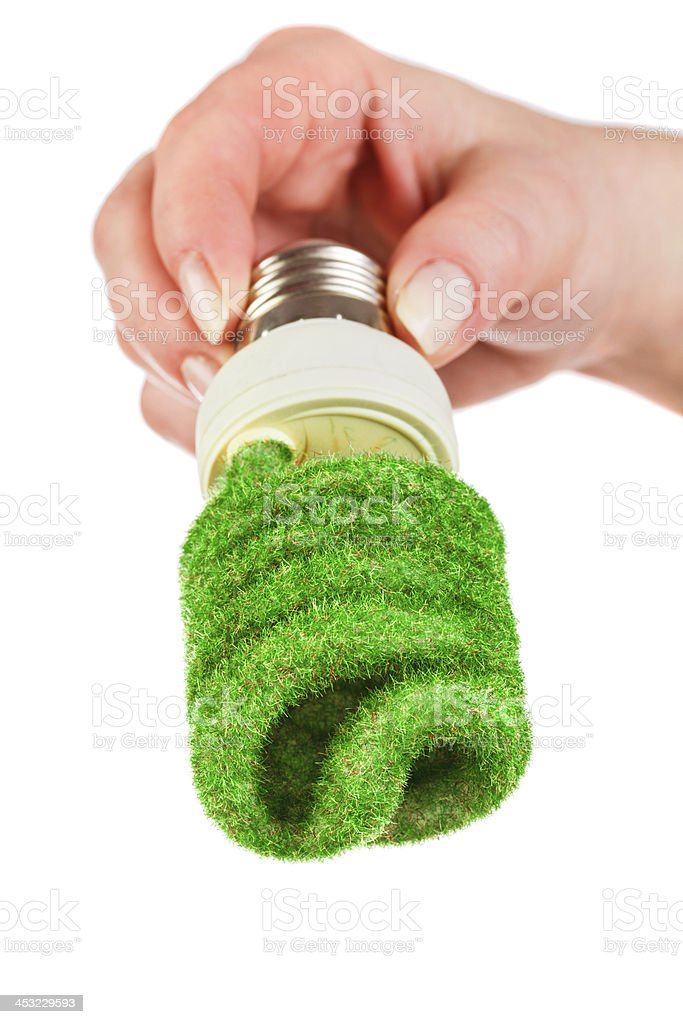 Concept Eco light bulb royalty-free stock photo
