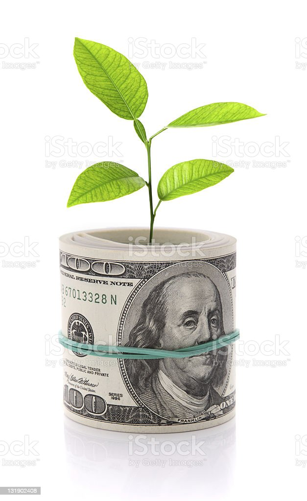 Concept image of money growth isolated on white royalty-free stock photo