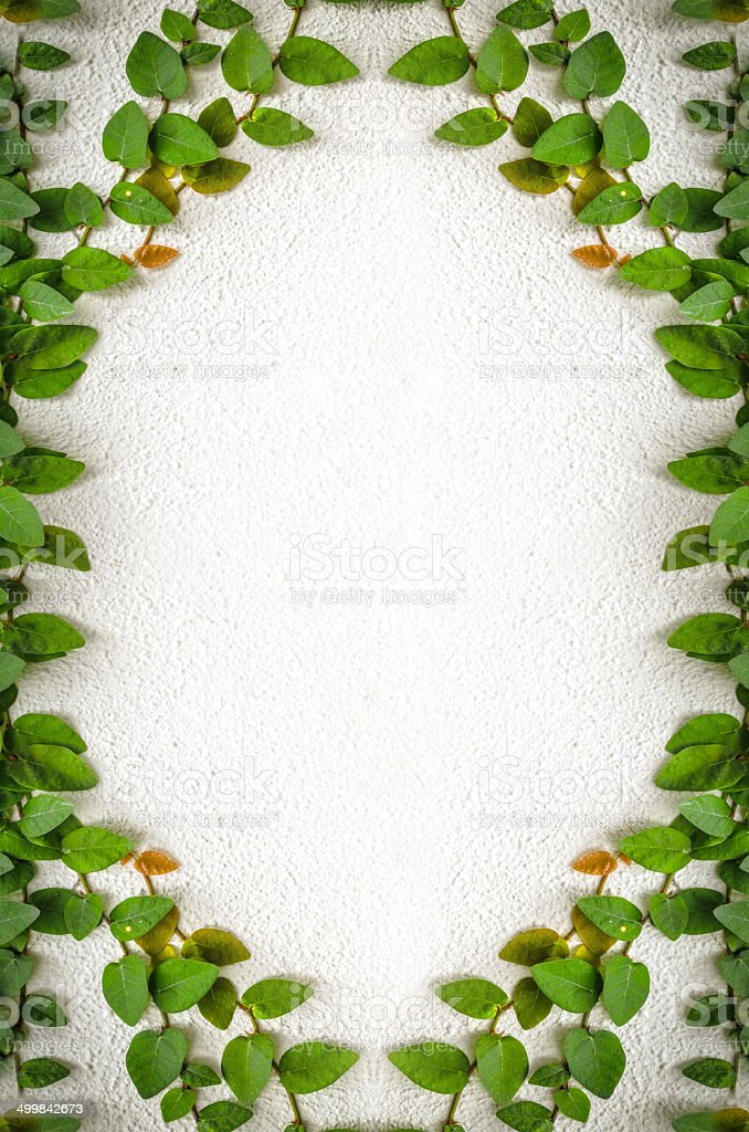 Concept keeper green leaves wall background royalty-free stock photo