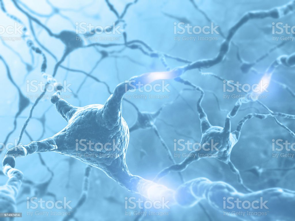 Concept of brain with nervous system and neuron stock photo