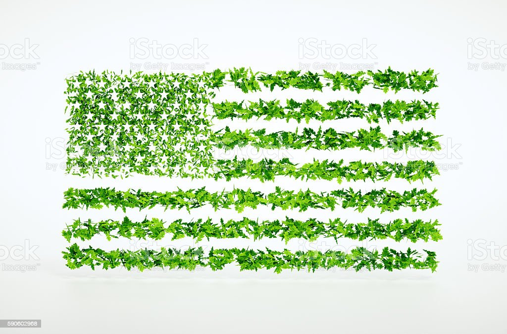Concept of eco friendly United States. stock photo