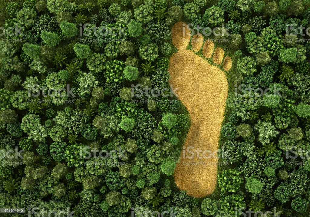 Concept of ecology. stock photo