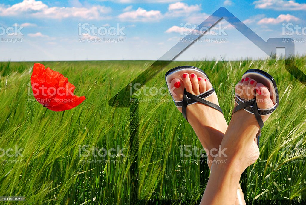 concept of green house royalty-free stock photo