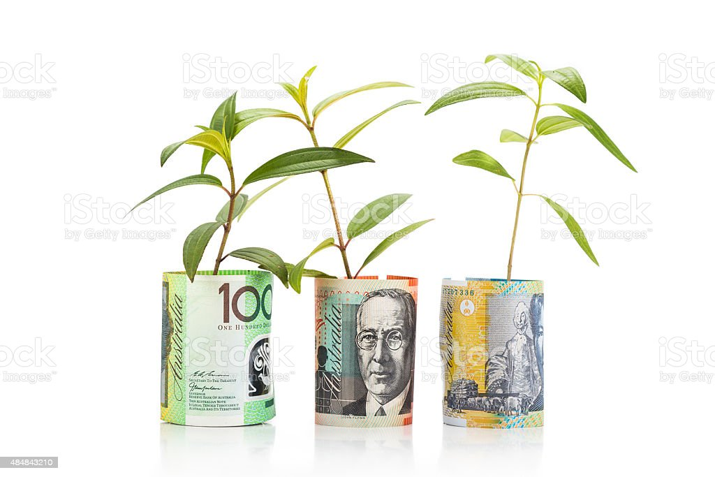 Concept of green plant grow on Australian Dollar currency note stock photo
