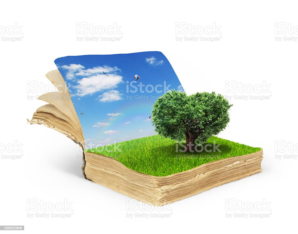 Concept of magic book covered with grass stock photo