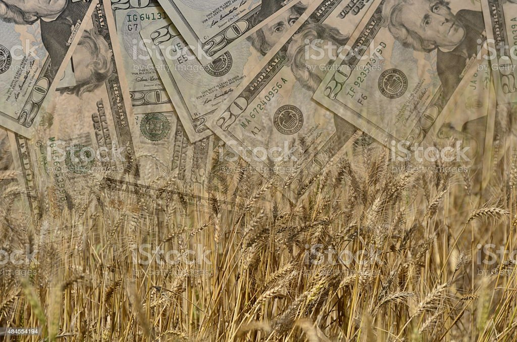 Concept of making money agriculture stock photo