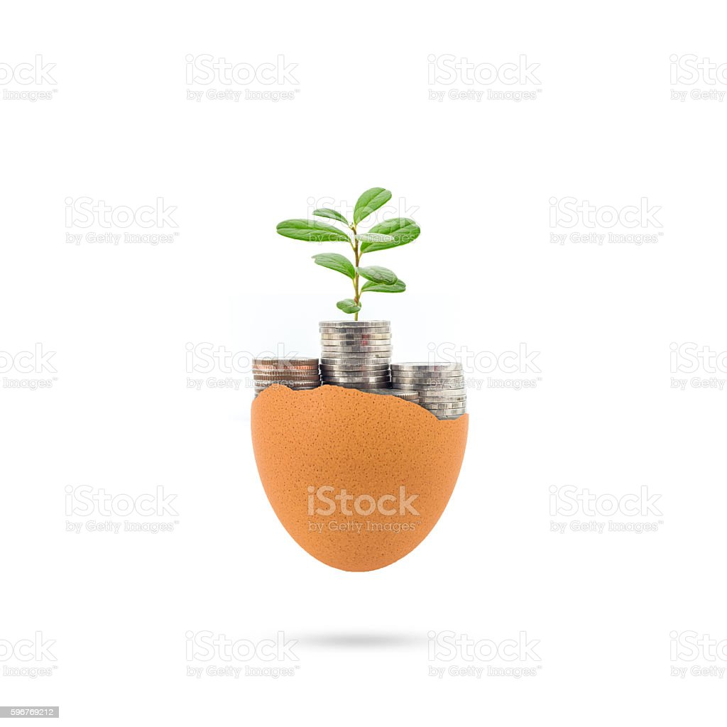 concept of new money and plant growing in coins stock photo