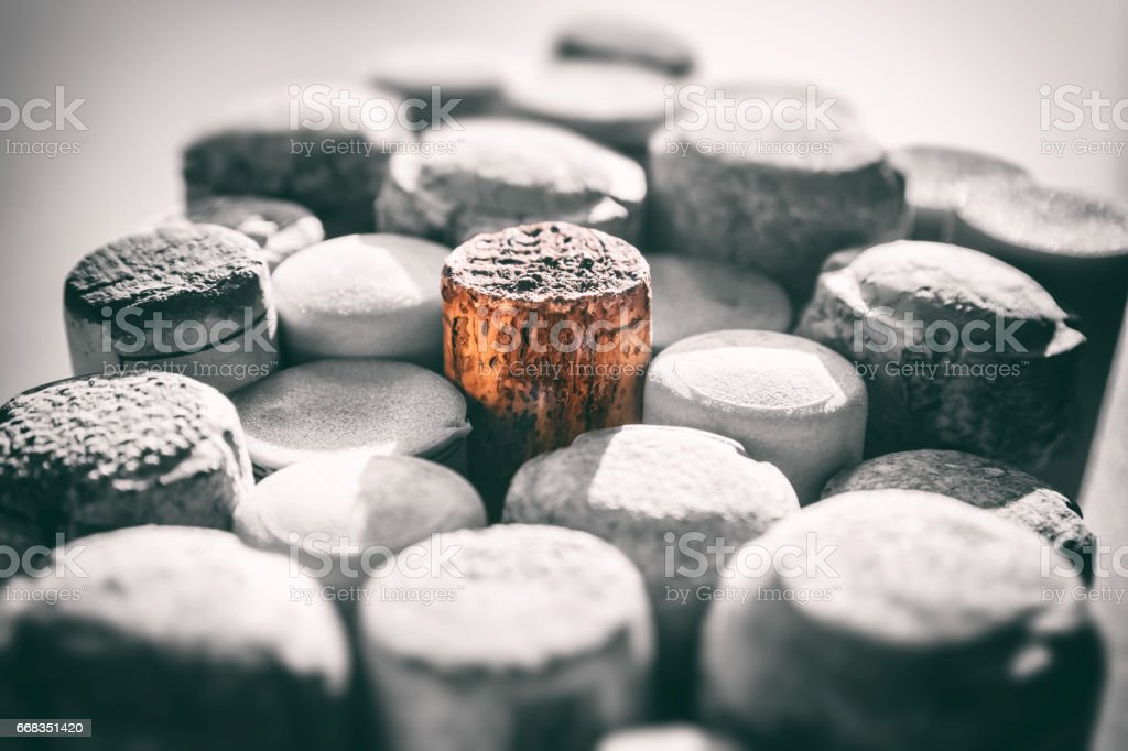 Concept of one wine cork standing out from the crowd in middle of group of multiple bottle stoppers in selective focus stock photo