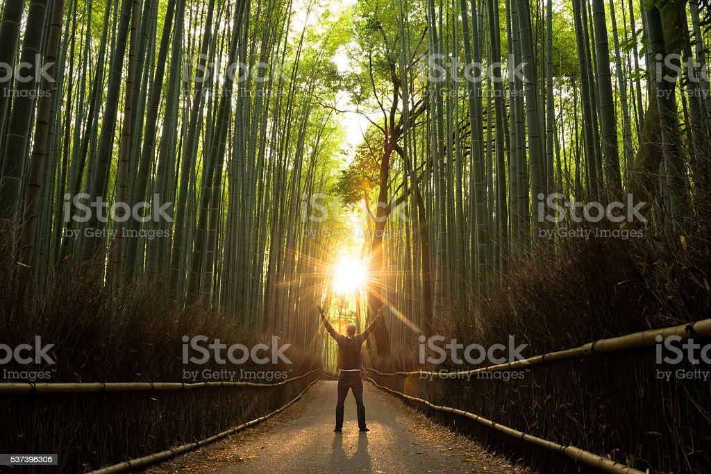 Concept of Success in a natural setting stock photo