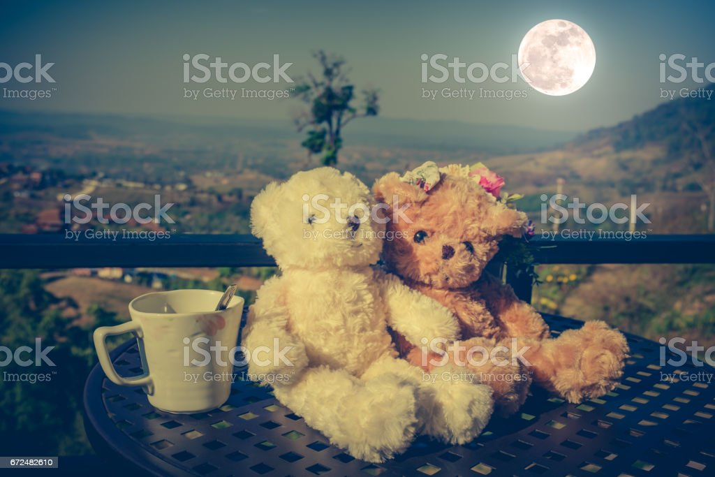 Concept teddy bears couple with love for valentine day. stock photo