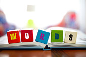 WORDS Concept with four building blocks on book