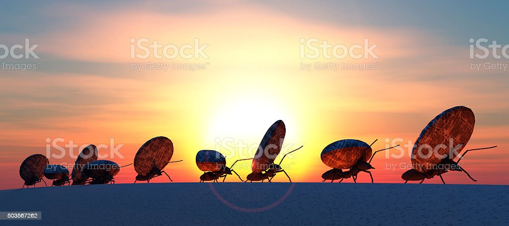 concept work, team of ants stock photo
