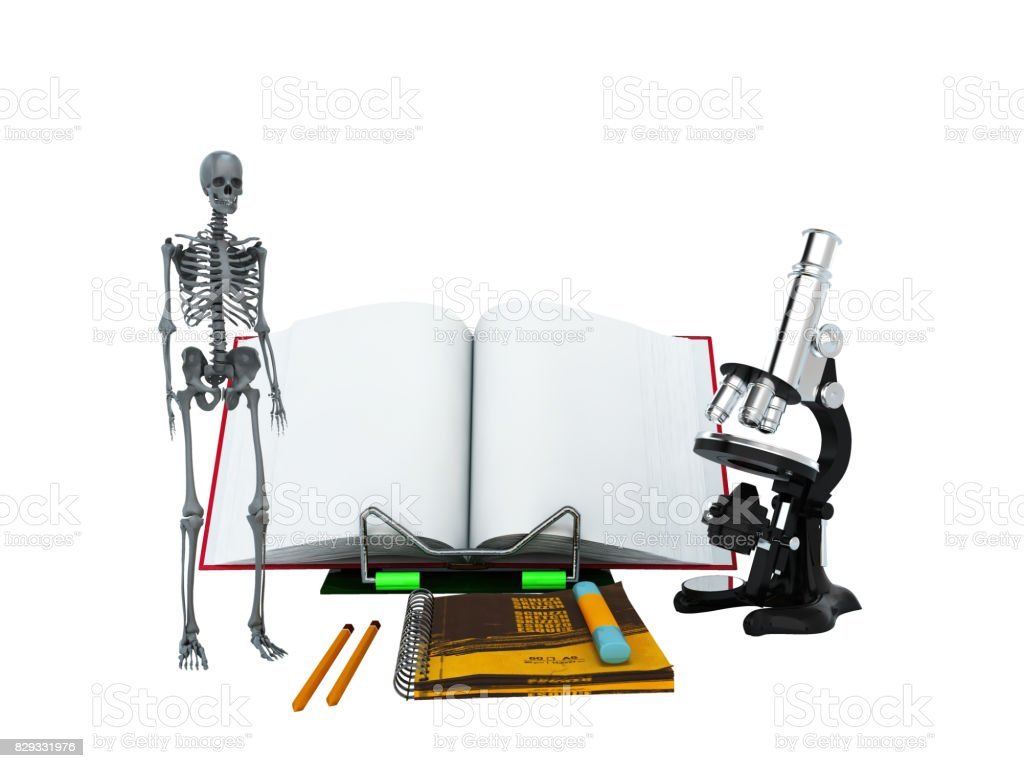 Concepts of school and education biology 3d render on white background no shadow stock photo