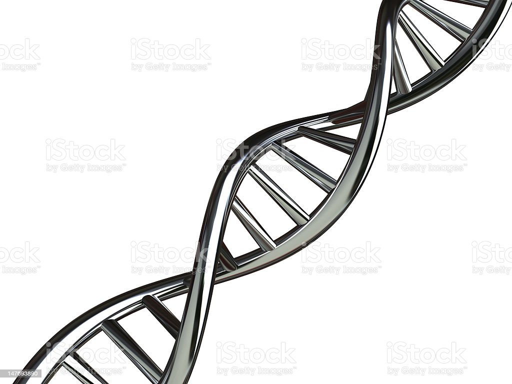 conceptual dna with clipping path stock photo