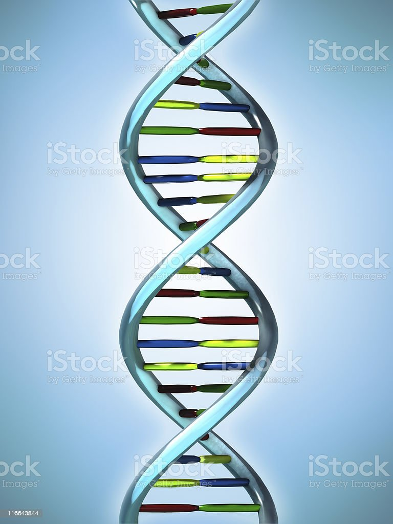 Conceptual Illustration of a DNA molecule royalty-free stock photo