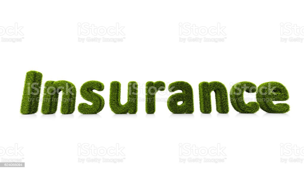 conceptual word insurance covered of grass isolated on white background stock photo